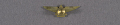 View Pin, Lapel, Amateur Air Pilots Association digital asset number 2