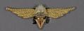 View Badge, Navigator 1st Class, Romanian Air Force digital asset number 0