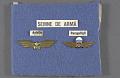 View Badge, Aviator, Romanian Army digital asset number 0