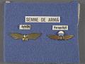 View Badge, Aviator, Romanian Army digital asset number 2