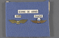 View Board, Display, Romanian Army digital asset number 0
