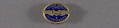 View Pin, Lapel, 5 Years Service, Chance-Vought Aircraft digital asset number 0