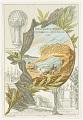 View No. 8. Mort de Pilatre de Rozier et de Romain. digital asset number 0