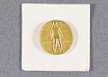 View Pin, Antarctic Service Medal digital asset number 0