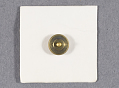 View Pin, Antarctic Service Medal digital asset number 2