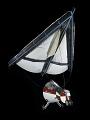 View Paraglider Capsule, Gemini TTV-1 digital asset number 1