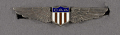 View Badge, Pilot, Civil Aeronautics Administration digital asset number 0