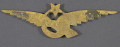 View Badge, Tourism, Turkish Air Force digital asset number 2