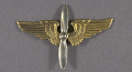 View Badge, Aviation Cadet, Mexican Air Force digital asset number 0