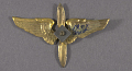 View Badge, Aviation Cadet, Mexican Air Force digital asset number 2