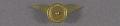 View Pin, Lapel, Michigan Aero Club 1929 digital asset number 2