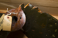 View Olmsted Propeller, fixed-pitch, two-blade, wood digital asset number 1