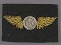 View Badge, Observer, United States Navy digital asset number 0