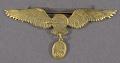 View Badge, Pilot, Bolivian Air Force digital asset number 0