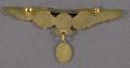 View Badge, Pilot, Bolivian Air Force digital asset number 2