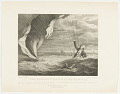 View The Perilous Situation of Major Money. When he fell into the sea with his Balloon on the 23 of July 1785 off the Coast of Yarmouth; was most providentially discover'd and taken up by the Argus Sloop after having remained in the water during five hours. digital asset number 0