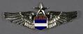 View Badge, Pilot, Nicaraguan Air Force digital asset number 0