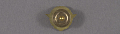 View Pin, Lapel, 5 Years Service, Wright Aeronautical Corp. digital asset number 2