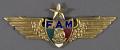 View Badge, Senior Pilot, Mexican Air Force digital asset number 0