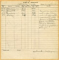 View Wright (Brothers) Flight Logs digital asset number 4