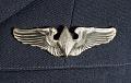 View Tunic, Dress, Women Airforce Service Pilots (WASP), Haydu digital asset number 7