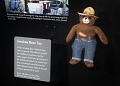View Toy, Smokey Bear plush, Space Flown digital asset number 3