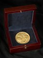 View Medal, Congressional Gold, Fighter Aces digital asset number 3