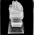 View Glove, Right, A7-L, Extravehicular, Apollo 11, Armstrong, Flown digital asset number 2