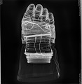 View Glove, Left, A7-L, Extravehicular, Apollo 11, Armstrong, Flown digital asset number 3
