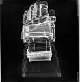 View Glove, Left, A7-L, Extravehicular, Apollo 11, Armstrong, Flown digital asset number 2