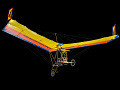 View Manta Pterodactyl Fledgling digital asset number 1