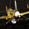 View Curtiss P-40E Warhawk (Kittyhawk IA) digital asset number 3