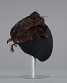 View Brown feathered pillbox hat from Mae's Millinery Shop digital asset number 5