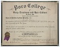 View Diploma issued to Lucille Brown from Poro College digital asset number 0