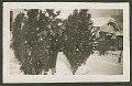 View Page of a photograph album from Tulsa, Oklahoma digital asset number 4