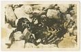 View Photographic postcard of an unidentified victim of Tulsa Race Massacre digital asset number 0