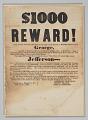 View Broadside offering reward for capture of George, Jefferson, Esther, and Amanda digital asset number 0