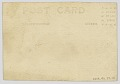 View Photographic postcard with image of a small child digital asset number 1