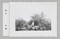 View Packet of four black and white photographs and one negative digital asset number 8