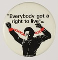 """View Pinback buttons with the phrase """"Everybody got a right to live"""" digital asset number 0"""