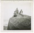 View Digital image of Taylor family women posing on a boulder on Martha's Vineyard digital asset number 0