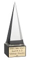 View American Music Award trophy given to Whitney Houston digital asset number 0