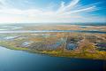 View Aerial photograph of rice fields near Fort McAllister digital asset number 0