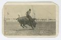 View <I>California Rodeo, Salinas, 1919</I> digital asset number 0