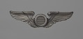 View Bombadier wings owned by Fenton B. Sands digital asset number 0