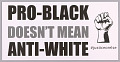"""View Posters stating """"Pro-Black Doesn't Mean Anti-White"""" used at MMM 20th Anniversary digital asset number 0"""