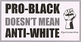 """View Posters stating """"Pro-Black Doesn't Mean Anti-White"""" used at MMM 20th Anniversary digital asset number 2"""