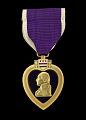 View Purple Heart issued for First Lieutenant John E. Warren, Jr. digital asset number 0