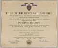 View Purple Heart Citation issued for First Lieutenant John E. Warren, Jr. digital asset number 0