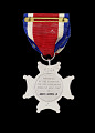 View Conspicuous Service Cross medal NY issued to First Lieutenant John E. Warren Jr. digital asset number 1